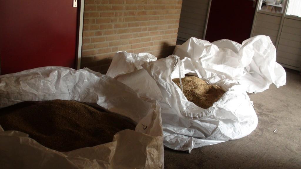 Vier kistzakken in de gang van 't Boschveld met graan dat nog gezeefd moet worden